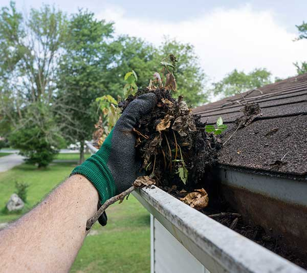 4 Roof Repair Tips Every Homeowner Should Know